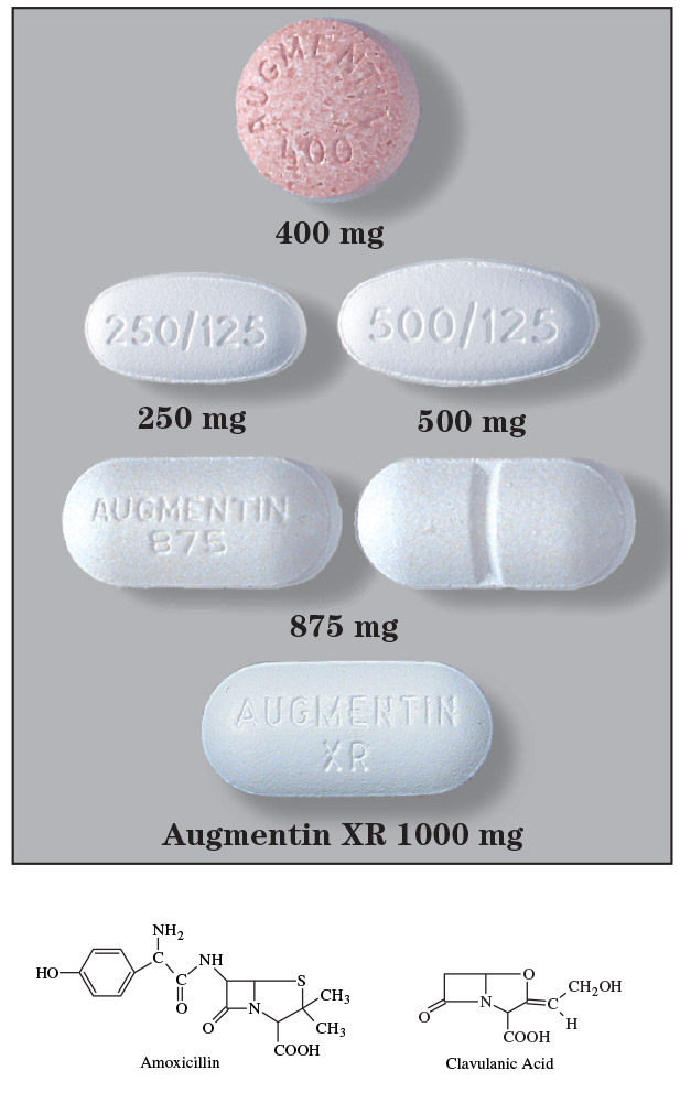 ciprofloxacina para perros efectos